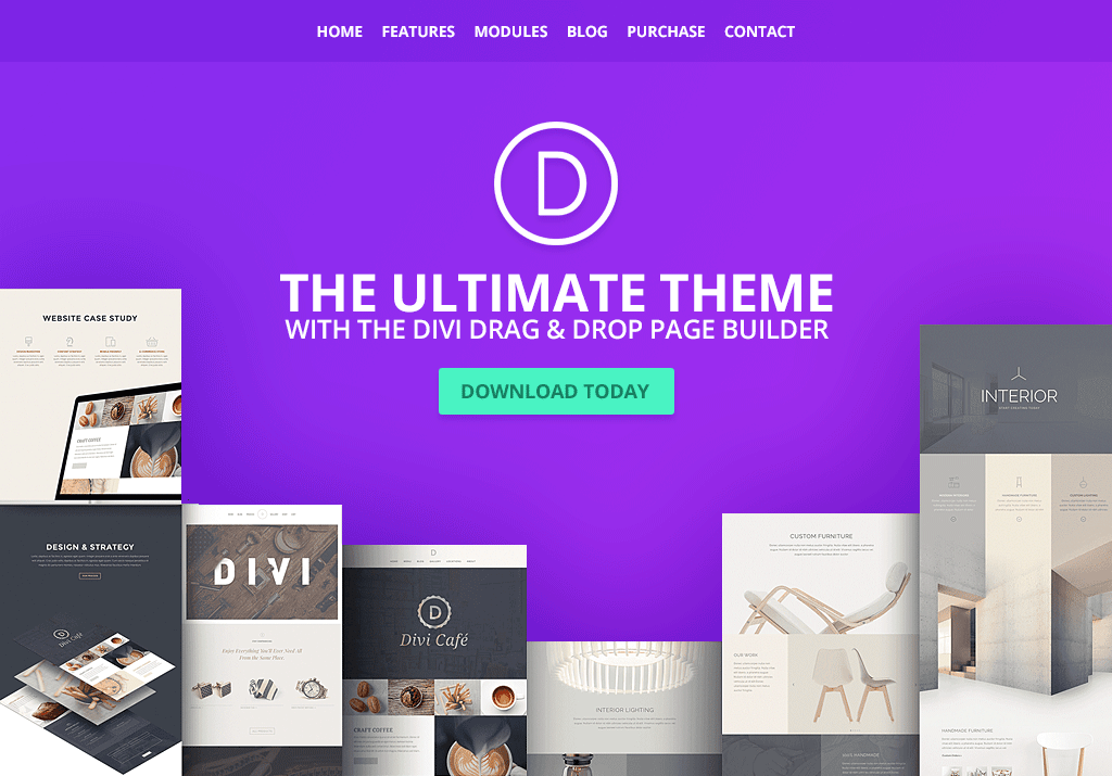 divi wordpress templates premium
