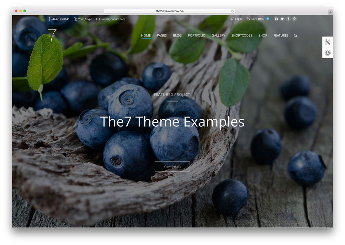 the7-wordpress best themes